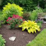 Start Planning Your Garden Now